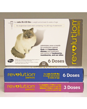 Zoetis Revolution/Stronghold cat 6X (select weight category)